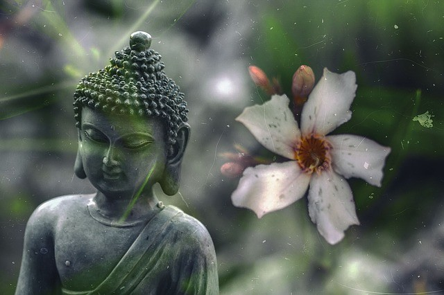 Be the Peace You Seek: Treasure Vase Qi Dharmas Meditation Class